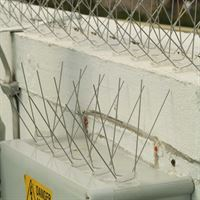 Defender 8™ Wide Stainless Steel Bird Spikes - Protecting Ledge