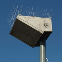Defender™ Seagull Spikes - Keeping Seagulls off Ledges