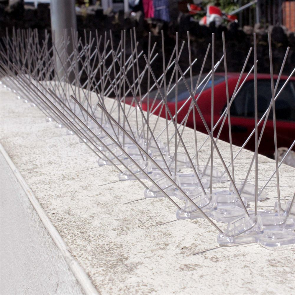 Photos | Defender® Pigeon & Bird Spikes Installed on Ledges