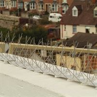 Extra Wide Stainless Steel Bird Control Spikes - Keeping Birds off Ledges